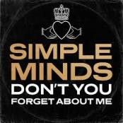 SIMPLE MINDS - DON T YOU