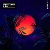 DAVID GUETTA - Flames Feat. Sia