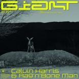 CALVIN HARRIS - Giant Feat Rag N Bone Man